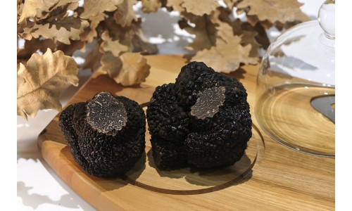 La meilleure truffe noire espagnole