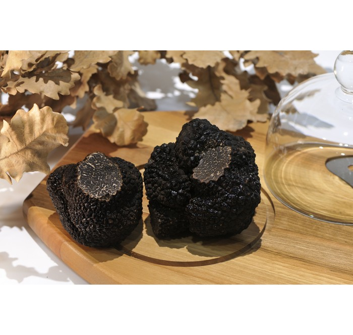 The best Spanish black truffle