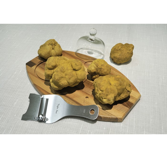 The white truffle from Alba or Tartufo bianco di Alba
